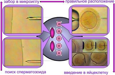 foto-aziatskih-krasavitsa