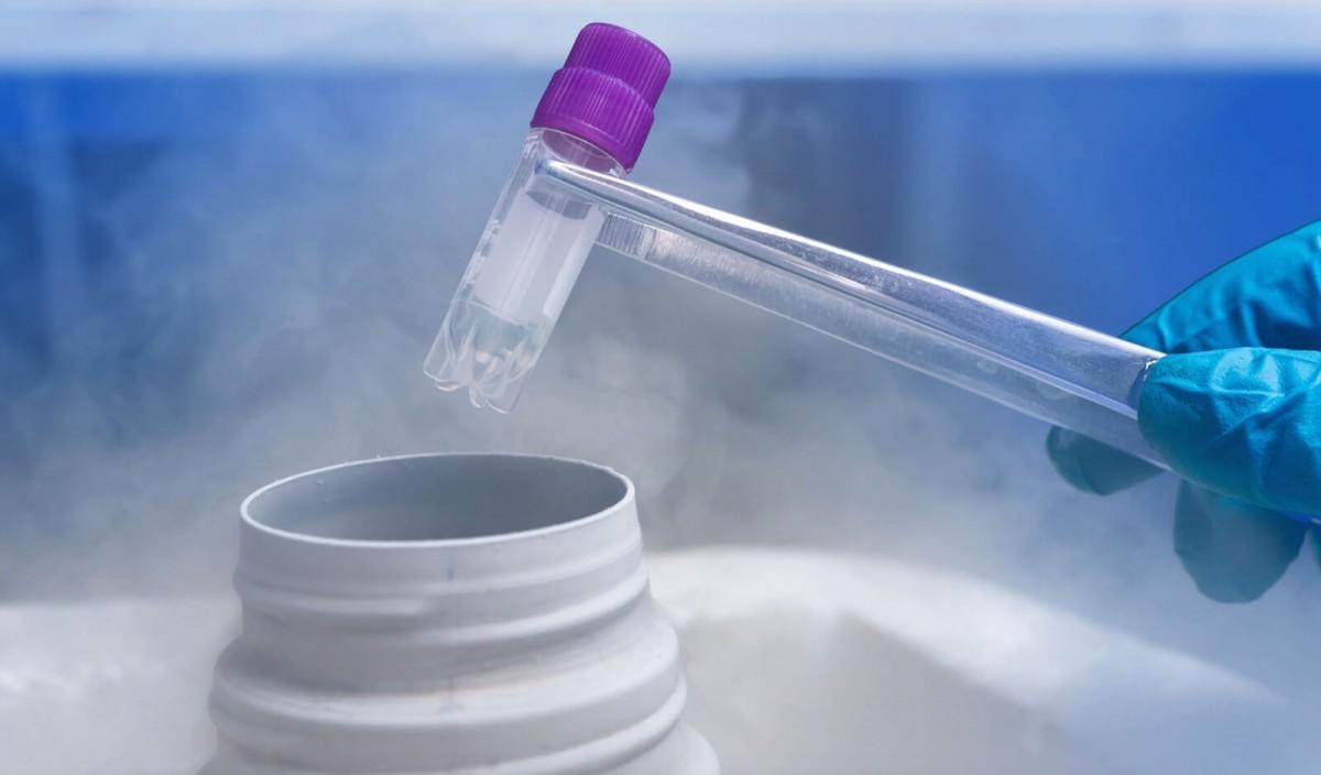 Замораживание ооцитов